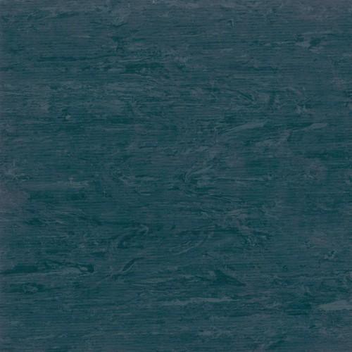 Horizon 003