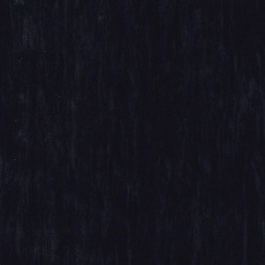 Линолеум Standard BLACK 0500